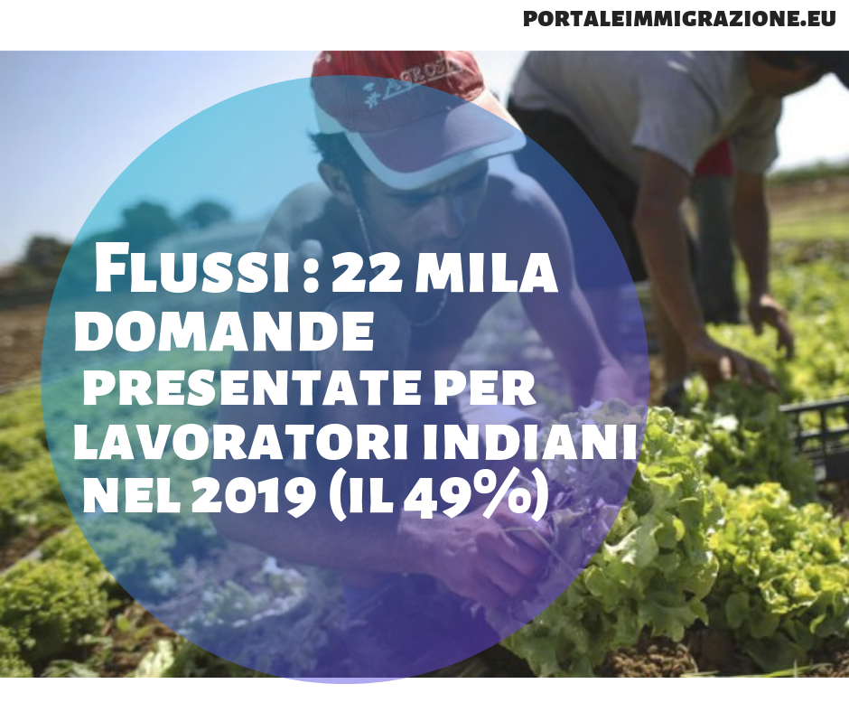 flussi numero domande stagionali : India in testa